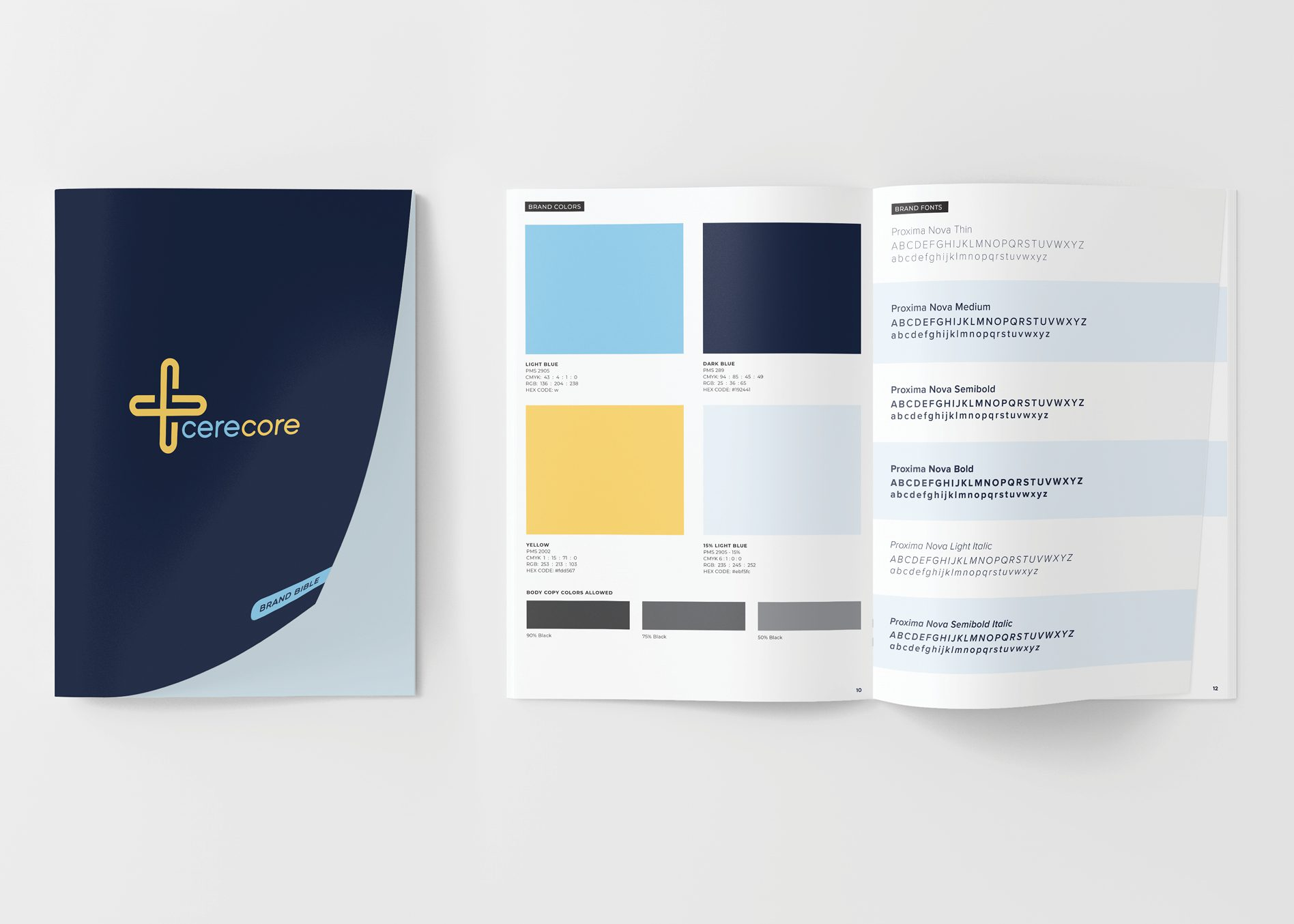 corporate brand guidelines book